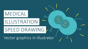medical illustration speed drawing vector graphics in