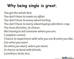 Memes About Being Single - being single is great by trollzor19 meme center