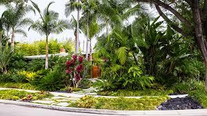 tropical plants retreat sunset com
