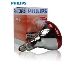 compare prices on 250w infrared lamp online shopping buy low