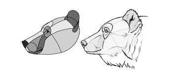 coloring mesmerizing drawing bear coloring