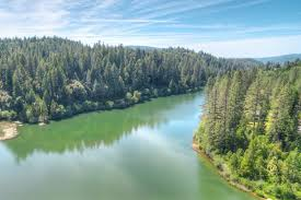 owner finance cabin lake madrone gated community for sale log