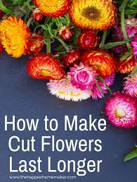 How To Take Care Of Flowers In A Vase How To Keep Cut Hydrangeas From Wilting Simple Florist U0027s Trick