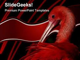 parasite powerpoint templates slides and graphics