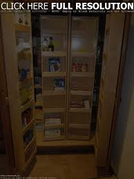 kitchen cabinets pantry ideas cabinet ideas to build