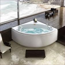 Bathtub Houston Bathtubs Idea Amusing Craigslist Bathtubs Craigslist Kitchen