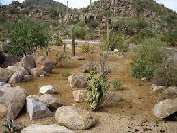 Arizona Landscape Ideas by Tucson Landscape Ideas Tucson Pool Ideas Valley Oasis Pools U0026 Spas