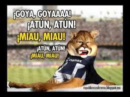 Memes De Pumas Vs America - 10 memes que ya calientan el cruz azul vs pumas de liga mx as m礬xico