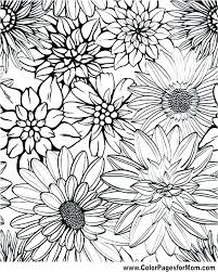 printable coloring pages of pretty flowers advanced coloring pages advanced coloring pages to print adult