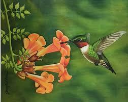 Hummingbird Art Hummingbird Hummingbird Wall Art Home