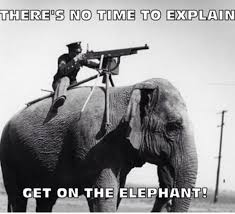 Elephant Meme - war elephant meme by theking337 memedroid