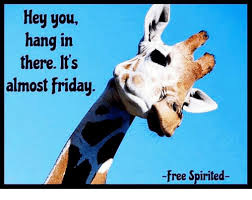Almost Friday Meme - hey you hang in there its almost friday free spirited friday