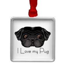 i pugs ornaments keepsake ornaments zazzle