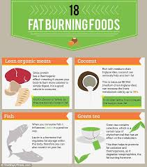 the 18 fat burning foods that will help you lose weight daily