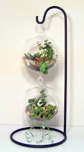 large hanging glass terrarium stand or by flatherscreations