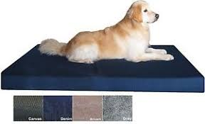 Memory Foam Dog Bed Jumbo Memory Foam Dog Bed With Durable Waterproof Cover For Big