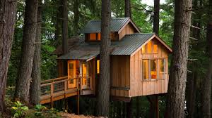 Tree House Home by Adults Who Live In Treehouses On Vimeo