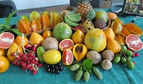 picture sunday a winter harvest in florida root simple