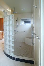 Bathroom Designs With Walk In Shower by 81 Best Home Decorating Ideas Images On Pinterest Glass Block
