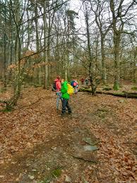 Wetter Bad Wildungen 7 Tage Die 10 Schönsten Wanderungen In Hessen Komoot