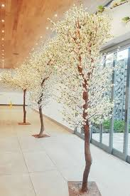 wedding arches for hire cape town white blossom tree hire for weddings events muse decor hire