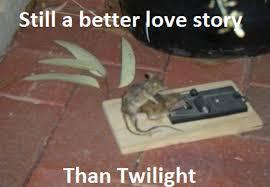 Meme Stories - 20 better love stories than twilight pics smosh