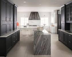 crown molding kitchen cabinet contemporary houzz
