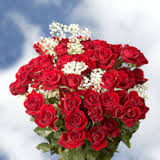 roses wholesale all flowers at wholesale pricing global