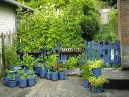 season extenders minerva u0027s garden blog
