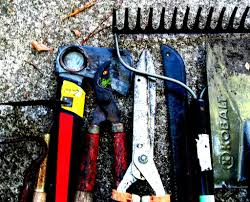 Types Of Hoes For Gardening - information about gardening tools must have tools for garden and