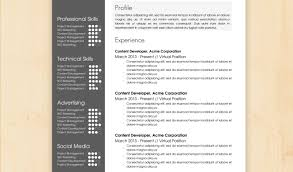 professional resume template 2013 resume fresh design resume template 5 30 free beautiful resume