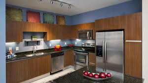 kitchen television under cabinet amenities pierhouse at channelside apartments in tampa
