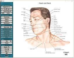 Netter Atlas Of Human Anatomy Online Netter Interactive Atlas Of Human Anatomy Free Download Direct Link