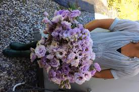 lisianthus flower five tricks to growing fantastic field lisianthus n fresh