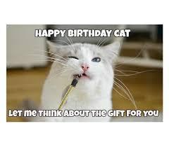 Cat Happy Birthday Meme - 45 cat birthday memes wishesgreeting