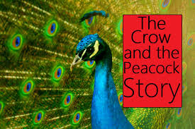 the crow and the peacock story in english moral stories for kids