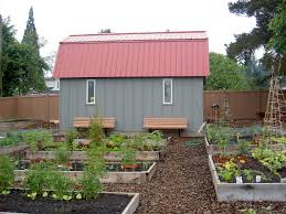 outdoor shed ideas fabulous gray wooden shed ideas with red wood roofing for