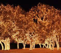 johnson city texas christmas lights the twinkliest drive in texas texas johnson city and christmas lights