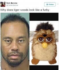 Hot Convict Meme - funny tiger woods mugshot memes memeologist com
