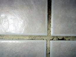 Floor Tile Repair Services The Grout Doctor