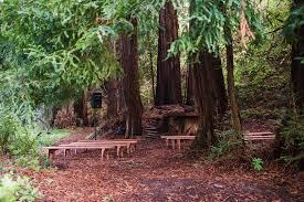 redwood forest wedding venue half moon bay cing wedding in redwoods