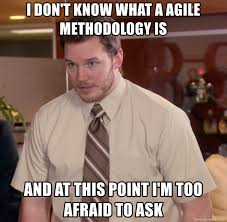 Agile Meme - i don t know what a agile methodology is and at this point i m too