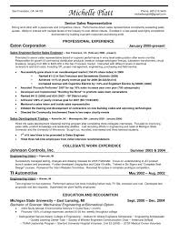 Resume Sle by Landman Resume Cv Cover Letter And Gas Buyer Sle