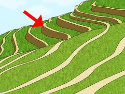 how to prevent soil erosion 15 steps with pictures wikihow