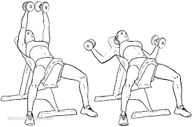 Incline Dumbell Bench Press Incline Bench Dumbbell Flyes Workoutlabs