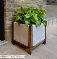 Plants And Planters by Best 25 Large Concrete Planters Ideas On Pinterest Concrete