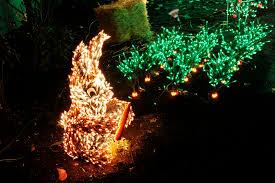 Bellevue Botanical Garden Lights Bellevue Washington News Page 16 Of 30 Discover Bellevue