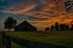 Kentucky landscapes images Kentucky landscape photography sheep feeding hay shaker village jpg