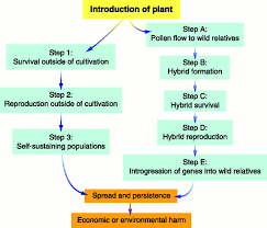 benefits of native plants the ecological risks and benefits of genetically engineered plants