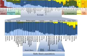 Genetic Map Of Europe by What Is The Origin Of The Slavs Ut Blog
